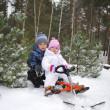 In the forest, the boy with a little girl sitting on a sled. — Stock Photo #37306795