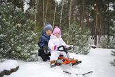 In the forest, the boy with a little girl sitting on a sled. — Stock Photo