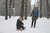Winter mother carries son on a sledge in the snowy woods — Stock Photo