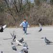 Boy chasing pigeons — Stock Photo #38692925