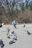 Boy chasing pigeons — Stock Photo