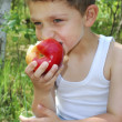Boy sits in a pine forest on a log and eats an apple — Stock Photo #39478773