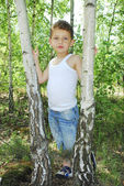 Summer in the forest stands a l curly boy near birches. — Stock Photo