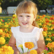 Summer girl stands in the colors of Marigolds — Stock Photo #40491679