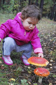 Girl in the forest fly agaric finger touches — Stock Photo