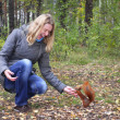 Woman in the woods squirrel bites the hand. — Stock Photo #41584413