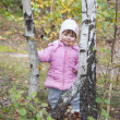 Stock Photo: Little girl in birch forest.