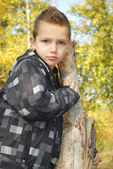 Serious boy in autumn forest. — Stock Photo