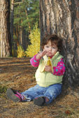 in the woods under a pine tree sits a beautiful little curly g — Stock Photo