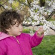 Spring in the garden a little girl holding a cherry branch. — Stock Photo #44846219