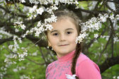 Весна в саду Маленькая девочка держит ветку вишни. — Стоковое фото