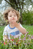 Little girl sitting in a meadow. — Stock Photo