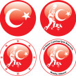 Illustration of flag of turkey — Stockvector #19815527