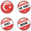 Yes or no vote badge button for turkish referendum election — Stok Vektör