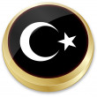 Flag of turkey in button shape — Imagens vectoriais em stock