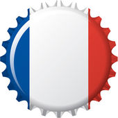 Flag of France in crown cap — Stock Vector