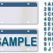 Empty License Plate New York With Editable Live Text - Stockvectorbeeld