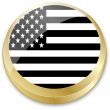 Flag of united state of america in in button shape — Stock vektor
