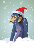 Year of the monkey.12 Zodiac Animals — Stock Vector