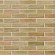 Vector seamless brick wall — Vector de stock #21207133