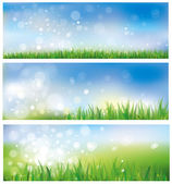 Vector of spring background, sky and grass. — Stock Vector
