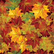 Vector seamless background of autumnal leaves. — Stockvektor