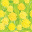 Seamless pattern of yellow dandelions. — Stock Vector