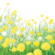 Vector of spring background with white dandelions. — Stock Vector #21462577