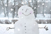 Fun snowman in park. — Stock Photo