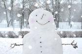 Fun snowman in park. — Stock Photo