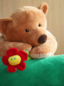 Cute bear with flower. — Stock Photo