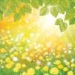 Vector of sky background with yellow dandelions and leaves. - Vettoriali Stock