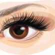 Vector of beautiful brown woman's eye. — Vettoriale Stock