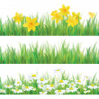 Vector of daffodil flowers, grass and chamomiles isolated for spring and Easter design. — Stock Vector