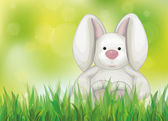 Spring background with rabbit in green grass. — 图库矢量图片