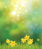 Spring background. — Stockvector