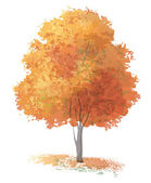 Vector autumnal tree. — Stock Vector