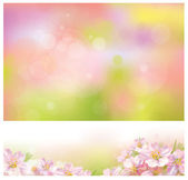 Spring backgrounds — Stock Vector