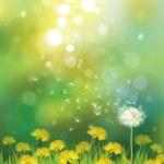 Постер, плакат: Spring background with dandelions