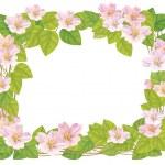 Vector floral frame. — Stock Vector