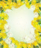 Vector floral frame with dandelions. — Stock Vector