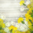 Stock Photo: Dandelions on wooden background.