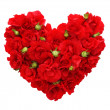 Stock Photo: Roses flowers heart shape isolated.