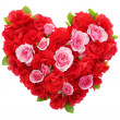 Roses flowers heart shape isolated. — Stock Photo