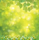 Vector spring background. — Stock Vector