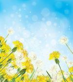 Vector dandelions on sky background. — Stock Vector