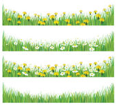 Vector green grass with chamomiles and dandelions. — Stock Vector