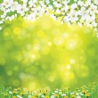 Vector blossoming tree on spring background. — Stock Vector