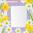 Vector empty photo frames with daffodils. — Stock Vector