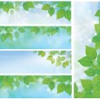 Stock Vector: Nature banners, branch of birch tree